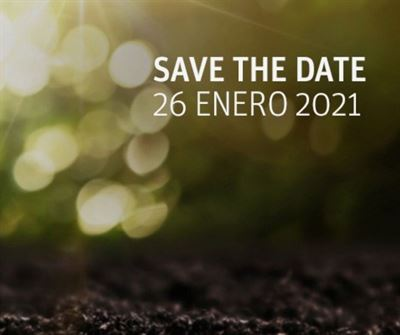 Empleo en Sostenibilidad y Medio Ambiente. 10 profesiones con futuro